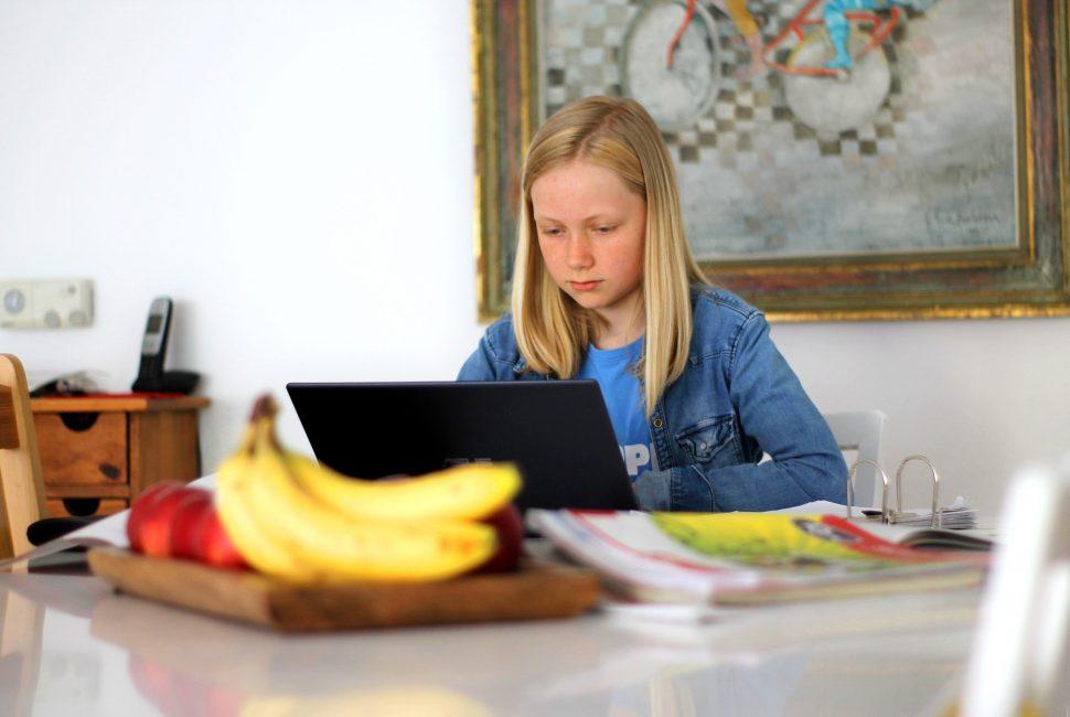 Tendencias en educación. Estudiar en casa